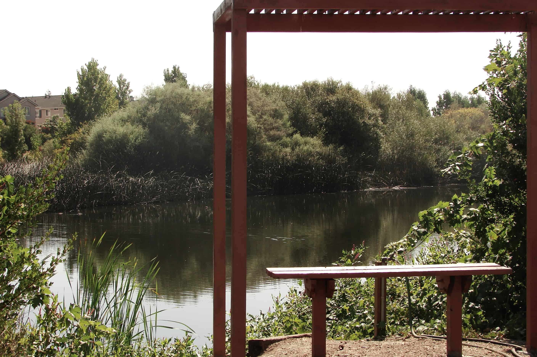 Tule Ponds 9-1-11 037