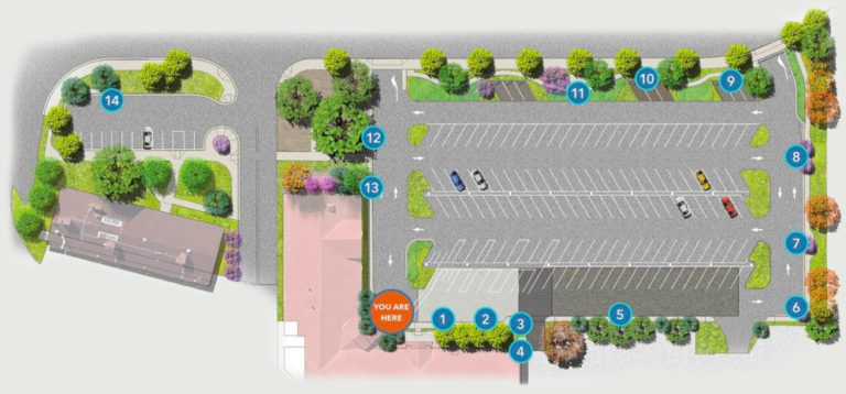 Green Infrastructure overhead diagram of parking lot